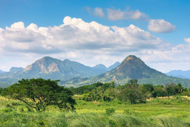 A landscape with grassland and trees surrounding Mount Malasimbo in the Bataan province in the Philippines.